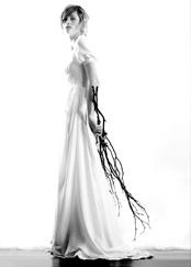 Elizabeth Dye Design