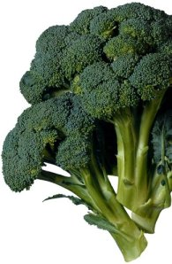 broccoli_tallthin